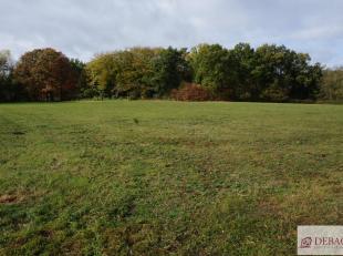 Ruime landbouwgrond, rustig en achterin gelegen, totale opp. 11490m². Niet verplacht en onmiddellijk beschikbaar. Meer info: www.debaco.be of bel