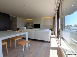 Zonnig en goed gelegen appartement vlakbij het Rubensplein (Albertstrand). Indeling: inkom met toilet, vestiaire en berging, open geïnstalleerde