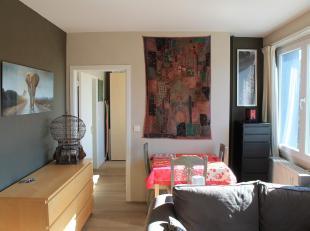 Mooi appartement van 49m² vlakbij het winkelcentrum en het station van Leuven. Het appartement is gelegen op de 3de verdieping in een gebouw met