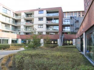 Landscape kantoren van 43m², 90m² en 113m² met gemeenschappelijke vergaderzalen, ontvangst- en ontspanningsruimte, toiletten en kitchen