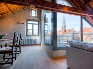 Nabij het oude centrum en de Grote Markt, luxe loft-appartement van ca. 170 m2 met prachtig aangelegd terras van ca. 15 m2 op de bovenste verdieping v