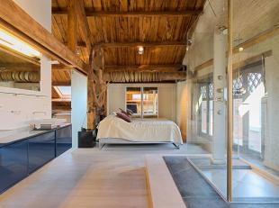 Nabij het oude centrum en de Grote Markt, luxe loft-appartement van ca. 160 m2 met prachtig aangelegd terras van ca. 15 m2 op de bovenste verdieping v