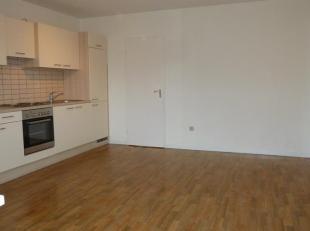 Gezellige lichtrijke studio te Diest.<br /> Omvat: Leefruimte met keuken, terras, badkamer met douche, wastafel en toilet.<br /> Gelegen op de eerste