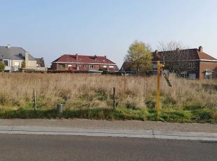 Terrain à vendre                     à 2870 Breendonk