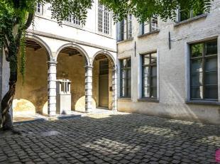 TE HUUR klein paleisje!! Prachtig historisch appartement in oudste pand van Antwerpen 'de Cluyse' in de Vlaeykensgang: UNIEK!!! Prachtige inrichting a