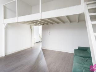 Toffe gerenoveerde duplex studio met slaapkamer op mansarde, op centrale, doch rustige ligging te Antwerpen centrum. Beschikbaar vanaf 01/11. Indeling