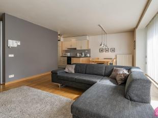 Mooi gemeubeld luxe appartement met 2 slaapkamers met deels Scheldezicht.Onmiddellijk beschikbaar. Het appartement is gelegen in hartje Antwerpen Zuid