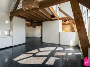 Op zoek naar een Atypisch appartement op een boogscheut van al het moois wat Antwerpen te bieden heeft? Gevonden!<br /> Dit unieke, speelse appartemen