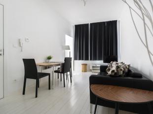 Erg gezellig gemeubeld één-slaapkamer appartement pal in het oude centrum van Antwerpen. Volledig geïnstalleerde keuken, badkamer m