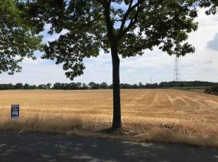 Gelegen: Te Reppel<br /> Mooi, rustig gelegen perceel landbouwgrond met een oppervlakte van 01ha 39are 32ca , toegankelijk via twee wegen, een landbou