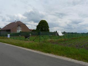 Gelegen op slechts 300 meter van de kerk van Lozen doch zeer rustig gelegen en met zicht op landerijen.<br /> Mooi perceel bouwgrond voor residenti&eu