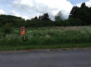 Deze grond is gelegen in het hart van de Ardennen. Houffalize is vooral gekend als een grote trekpleister voor mountainbikers, maar ook wandelaars en