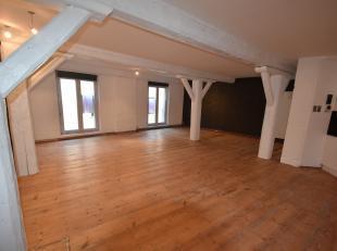 Loftappartement (100m²) bevindt zich in het oude centrum  in een voormalige puddingfabriek. Private kelderberging (9 m²). De authentieke ele