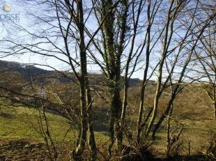 Une parcelle de +- 955 m² et de 19 m de façade, avec une vue sur la vallée de lOurthe.