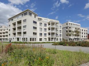 In deze nieuwe, groene Lierse buurt geniet je voluit van het leven. Dungelhoeff wisselt privéwoningen en kantoren af rond een aangenaam plein i
