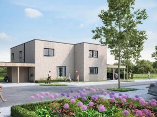 Lot 11 is een halfopen bebouwing op een perceel van 524m2. De woning bevat: Gelijkvloers: inkomhal, apart toilet, leefruimte met halfopen keuken, apar
