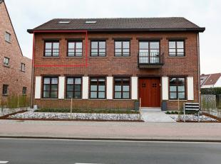 Appartement à louer                     à 2260 Westerlo