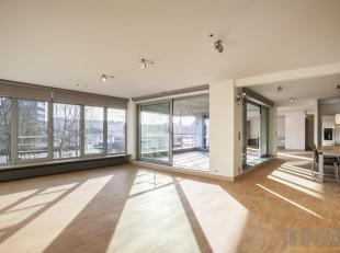 Meer dan riant en uiterst lichte loft van ca 197 m² gelegen op één van de meest idyllische locaties van Antwerpen. Pal aan de jacht