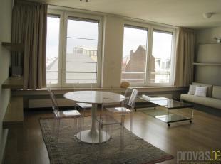Stijlvol gemeubelde studio van ca 44 m² in het hartje van Antwerpen. U kan haast niet centraler wonen dan in deze studio, gelegen in de statige H