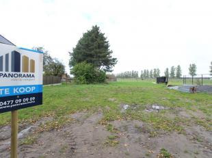 Perceel bouwgrond met mooie rustige ligging te Maldegem. Prachtige groene omgeving achteraan. Lot van 1052 m² met mooie vorm. Perceelbreedte voor