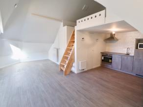 Appartement te huur nabij de VisserijPas vernieuwd appartement te huur te Gent, nabij de Visserij. Instapklaar, geverfd, alles vernieuwd. Ideaal voor