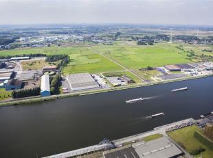 TE KOOP Industriegronden te koop te Evergem. Deze industriegronden maken deel uit van het project 'Grote Nest' en zijn gelegen in Evergem, vlakbij de