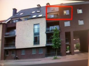 Appartementen te huur in maaseik 3680 hebbes & zimmo