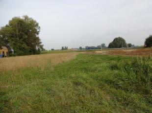 Een industriegrond te Roeselare te koop, gelegen langs een drukke baan, Ventweg Zuid. De grond kan enkel gebruikt worden voor professionele para-agrar