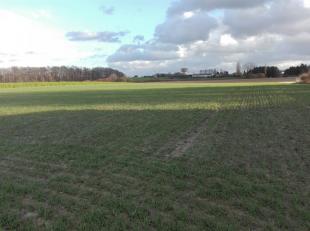 Landelijk gelegen bouwgrond voor halfopen bebouwing met ruim zicht op omliggende velden en ideale Zuidwestelijke oriëntatie.<br /> Totale oppervl