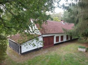 Maison à vendre                     à 2230 Herselt