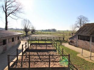 Wannebecq herbergt deze hoevewoning met paardenaccommodatie, centraal gelegen tussen Brussel, Gent, Lille en Charleroi, en op slechts enkele kilometer