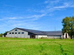 Deze unieke eigendom is gelegen te Snellegem, deelgemeente van Jabbeke en bevindt zich op amper 15 km van onze Belgische kust. De eigendom geniet van