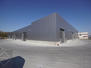 Beschikbare oppervlakte: Loods 4 : 265m² - benaderende afmetingen: 11m x 24m.<br /> AFWERKING:Magazijn:Betonnen constructie, NIEUWE gepolierde be