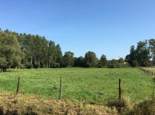 Deze bouwgrond is gelegen nabij de dorpskern van Zandbergen, op wandelafstand van onderwijs en openbaar vervoer. <br /> <br /> Voor deze bouwgrond is