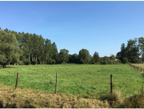 Zone de projet à vendre à Zandbergen, € 150.000