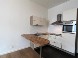 Trendy gerenoveerd 1-slaapkamerappartement op het gelijkvloers, nabij Park Spoor Noord. Lichte woonkamer op parketvloer (ca. 16m²). Open keuken v