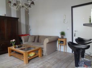 Luxueus afgewerkt bemeubeld appartement op Antwerpen Zuid aan de Waalse kaai en zijzicht Schelde. Woonkamer op parket met aansluitend een Frans balkon