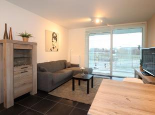 Appartement à louer                     à 2140 Borgerhout