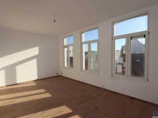Gerenoveerd duplex appartement in een klein gebouw nabij Helmstraat. Inkomhal, ruime woonkamer (ca. 24m²) op keramische tegelvloer met natuurlijk