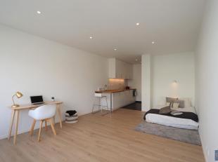 Modern gerenoveerde studio op de 3e verdieping nabij Zurenborg. Ruime en lichte woonkamer op vernieuwde laminaatvloer. Open ingerichte keuken voorzien