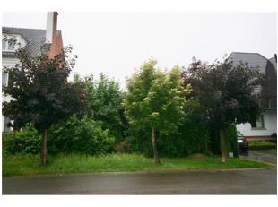 INTERACTIEVE OPENBARE VERKOOPBouwgrond aan de Meiliedstraat te Hasselt. Sectie E, afd 71324, nr 152/Z/2, opp 6a54ca.Gelegen in WG en niet overstroming