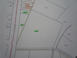 3 percelen weide / bouwland te Hasselt, Luikersteenweg; 1ha 1a 17ca; Gvg, Lwag, Gmo, Gvkr, Gvv, niet verpacht.Dagvaardigingengmo
