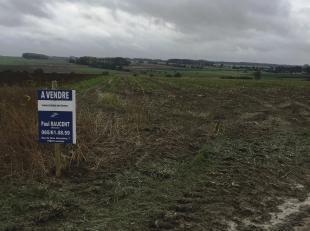 """Terre agricole sise au lieu-dit """"Grande Campagne""""<br /> Terre agricole sise au lieu-dit """"Grande Campagne"""", Chemin de Vellereille d'une contenance d'un"""