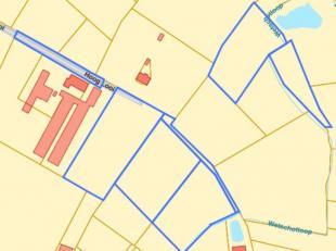 5 Percelen landbouwgrond te koop met bijbehorende wegenis. Thans ten kadaster gekend sectie C, nummer 315Z, 315A2, 388, 426A, 428A, 429 en 438 met een