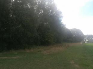 PERCEEL GROND VAN 3117M²<br /> Stad Ninove - 7e afd. - Denderwindeke<br /> Perceel grond, ter plaatse gekend Den Heel.<br /> KI  euro 14.<br /> 3