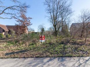 """OPENBARE VERKOOP grond """"Scheeren"""", 3940 Hechtel Eksel<br />  Notaris Dirk Seresia te Overpelt zal via een online openbare verkoop op www.biddit.be ove"""
