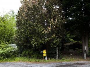 2 loten bosgrond (zie blauw en roze op kadastraal plan)<br /> Bouwgrond voor recreatieve bewoning<br /> Er is een toegangsweg aan verbonden.<br /> Per
