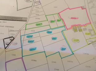 Percelen landbouwgronden en weilanden gelegen te Nieuwkerke, Niepkerkestraat * Sectie C, perceelnummers 0313 M P0000, 0315 P0000, 0316 P0000, 0319 P00