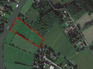 Perceel van 13.500 m² gelegen aan de Leie in natuurgebied. Ca 85 meter aan de oevers van de Leie op het einde van Pijkenaas. Beschermd landschap