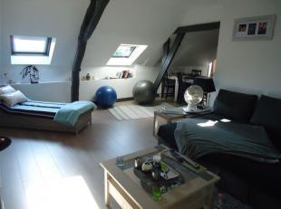 Appartement très spacieux, au 1er étage avec entrée privative. Facilité d'accès à l'autoroute A8. <br /> Com